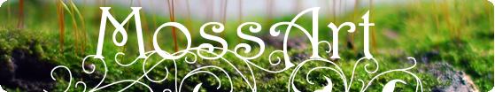 MossArt | Moss Fern Terrarium & Table Garden